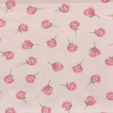 Tissu Jersey Coton Parfumé Roses sur fond Rose - Par 10 cm