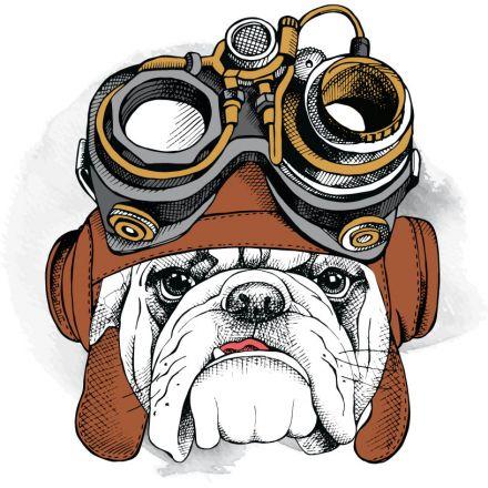 Sticker textile thermo-adhésif  7x7 cm - Bulldog aviateur