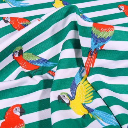 Tissu Jersey Coton Rayures larges  vertes et perroquets colorés sur fond Blanc