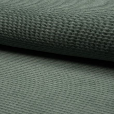 Tissu Jersey Côtelé Aspect Velours DUSTY MINT sur fond Vert d'eau - Par 10 cm