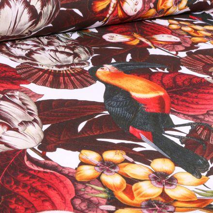 Tissu Toile de Coton Bachette Toucans et feuilles colorés sur fond Blanc