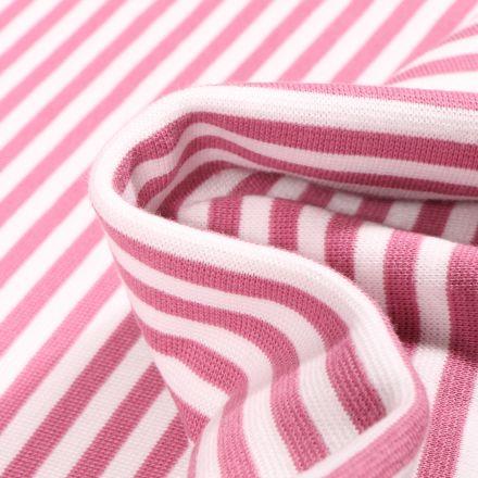 Tissu Bord côte Rayures 5mm vieux rose sur fond Blanc