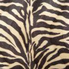 Tissu Velours Peau de bête Zèbre Beige et maron x10cm