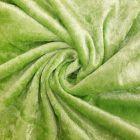 Panne de velours Vert pastel x10cm