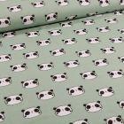 Tissu Flanelle de coton Têtes de pandas sur fond Vert d'eau - Par 10 cm