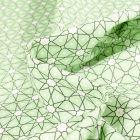 Tissu Coton enduit Etoiles et pois sur fond Vert menthe