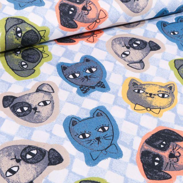 Tissu Coton imprimé Chiens & chats colorés sur fond Bleu ciel