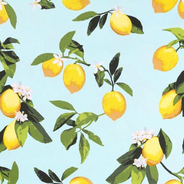 Tissu Coton Satiné Citrons Jaunes et verts sur fond Aqua - Par 10 cm