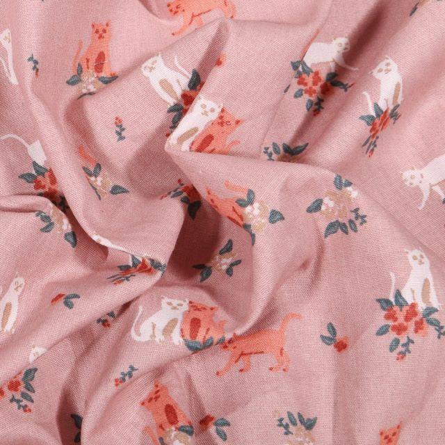 Tissu Coton imprimé Chats et fleurs sur fond Rose pâle - Par 10 cm