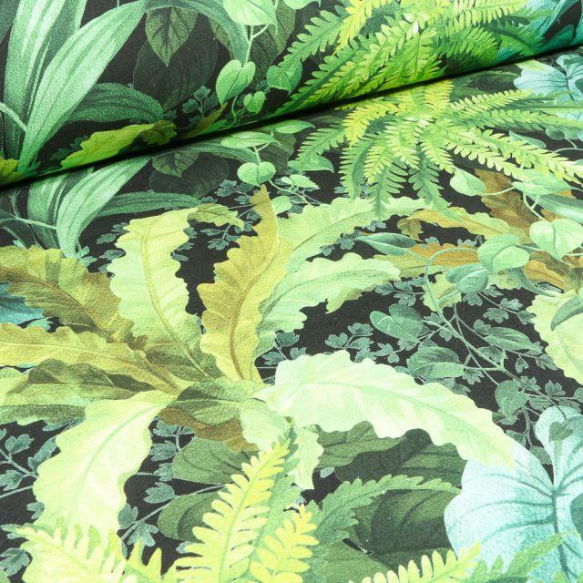 Tissu Toile de Coton Bachette Fougère sur fond Noir