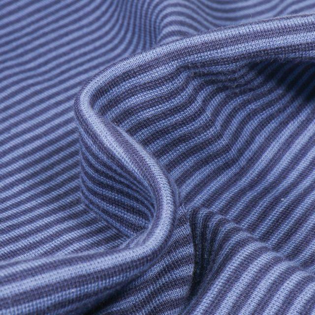 Tissu Bord côte Rayé bleu foncé sur fond Bleu clair