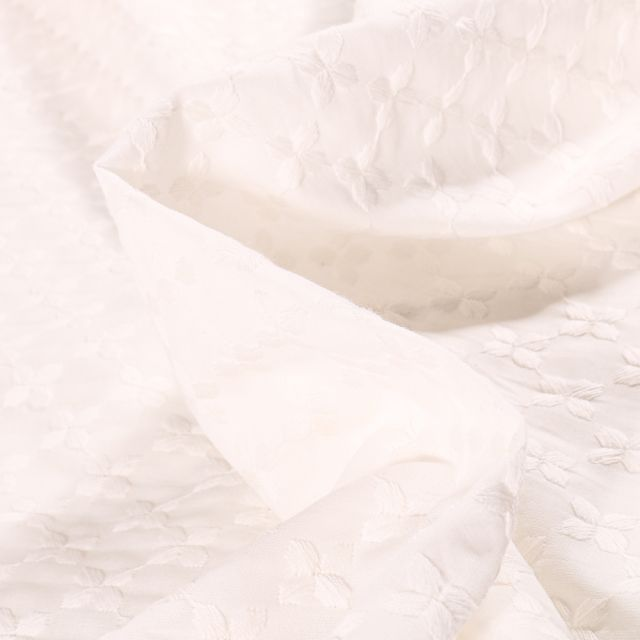 Tissu Broderie anglaise Papillons sur fond Blanc