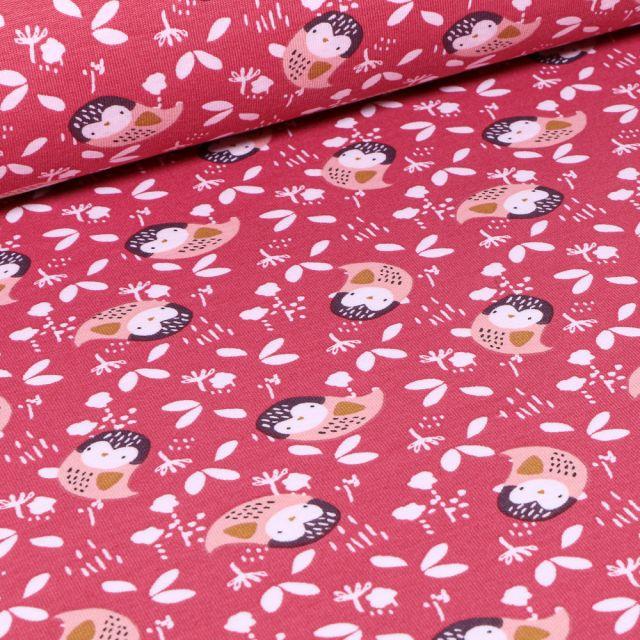 Tissu Jersey coton Kidia sur fond Bois de rose