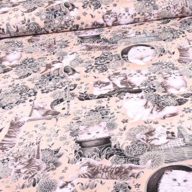 Tissu Coton imprimé QT Fabrics Sacré de Birmanie sur fond Beige