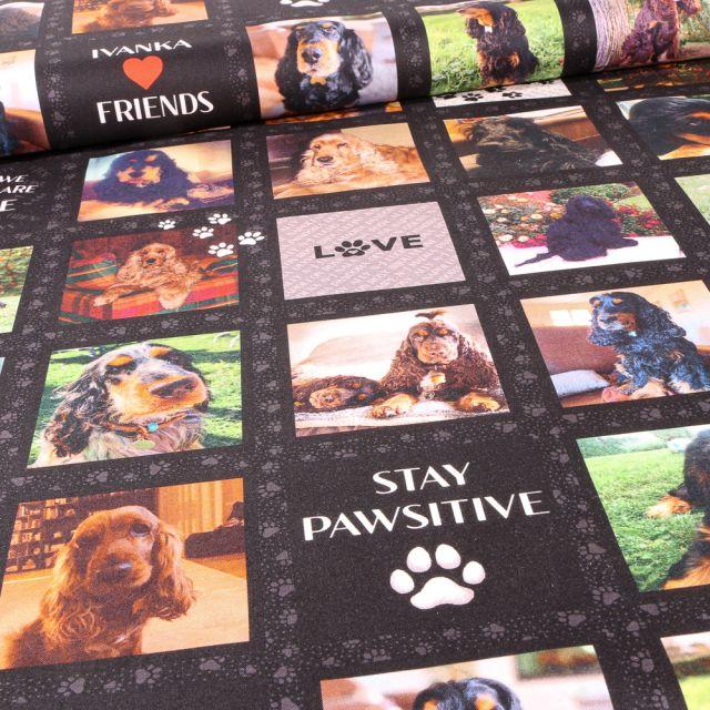 Tissu Coton imprimé Ivanka and friends pics sur fond Noir