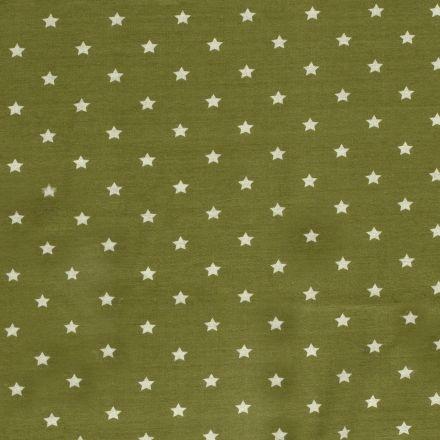 Tissu Sweat Etoiles envers minky sur fond Vert - Par 10 cm